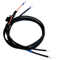 Battery Cable With 30A Fuse No Clamp